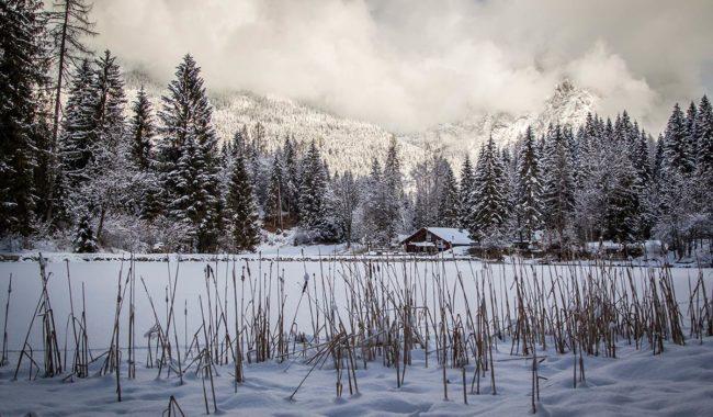 Valle del Primiero in inverno